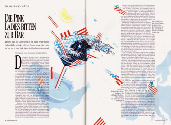 Pellegrino Magazine Illustration 13