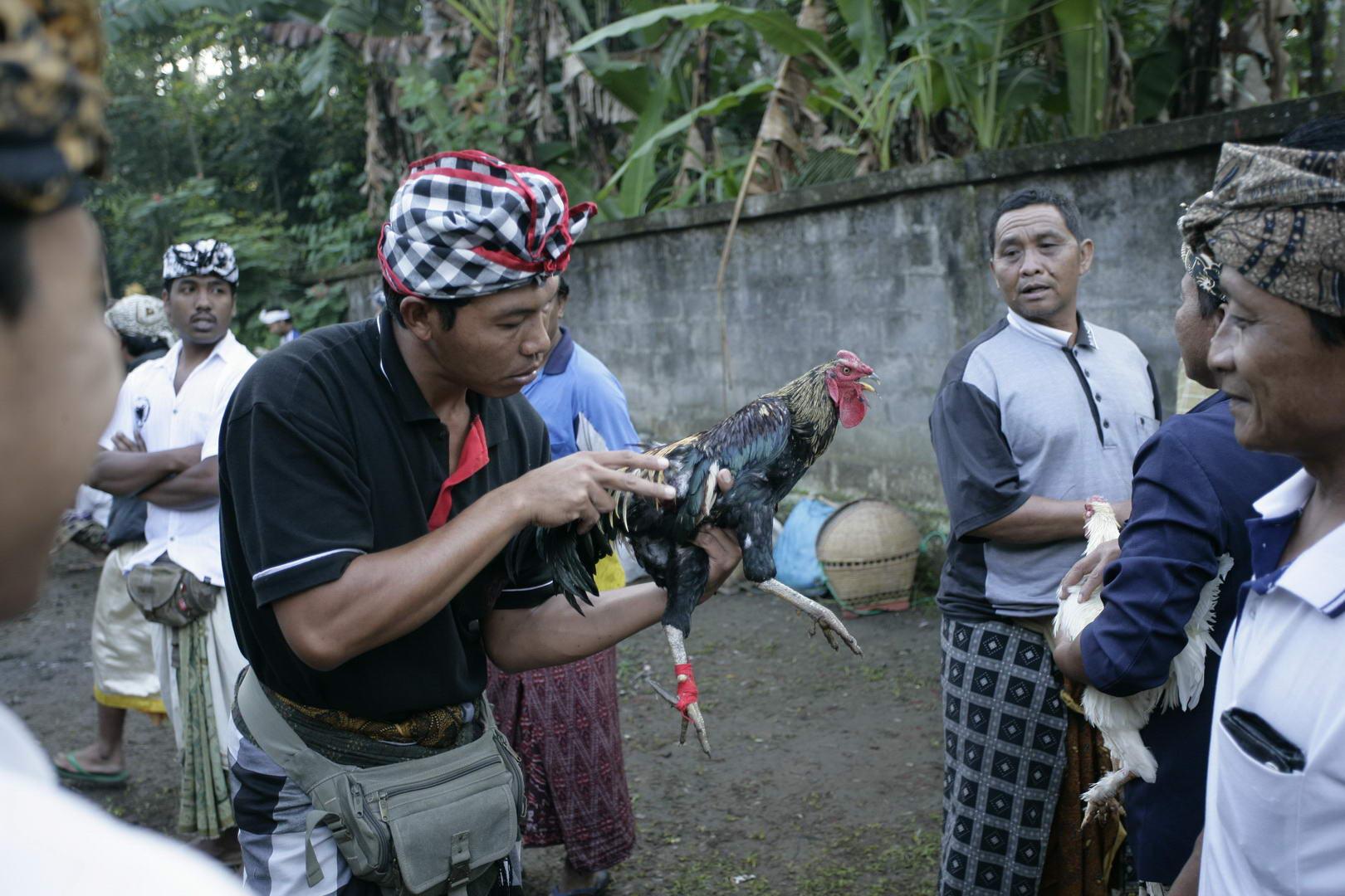 Eriks Bali 063
