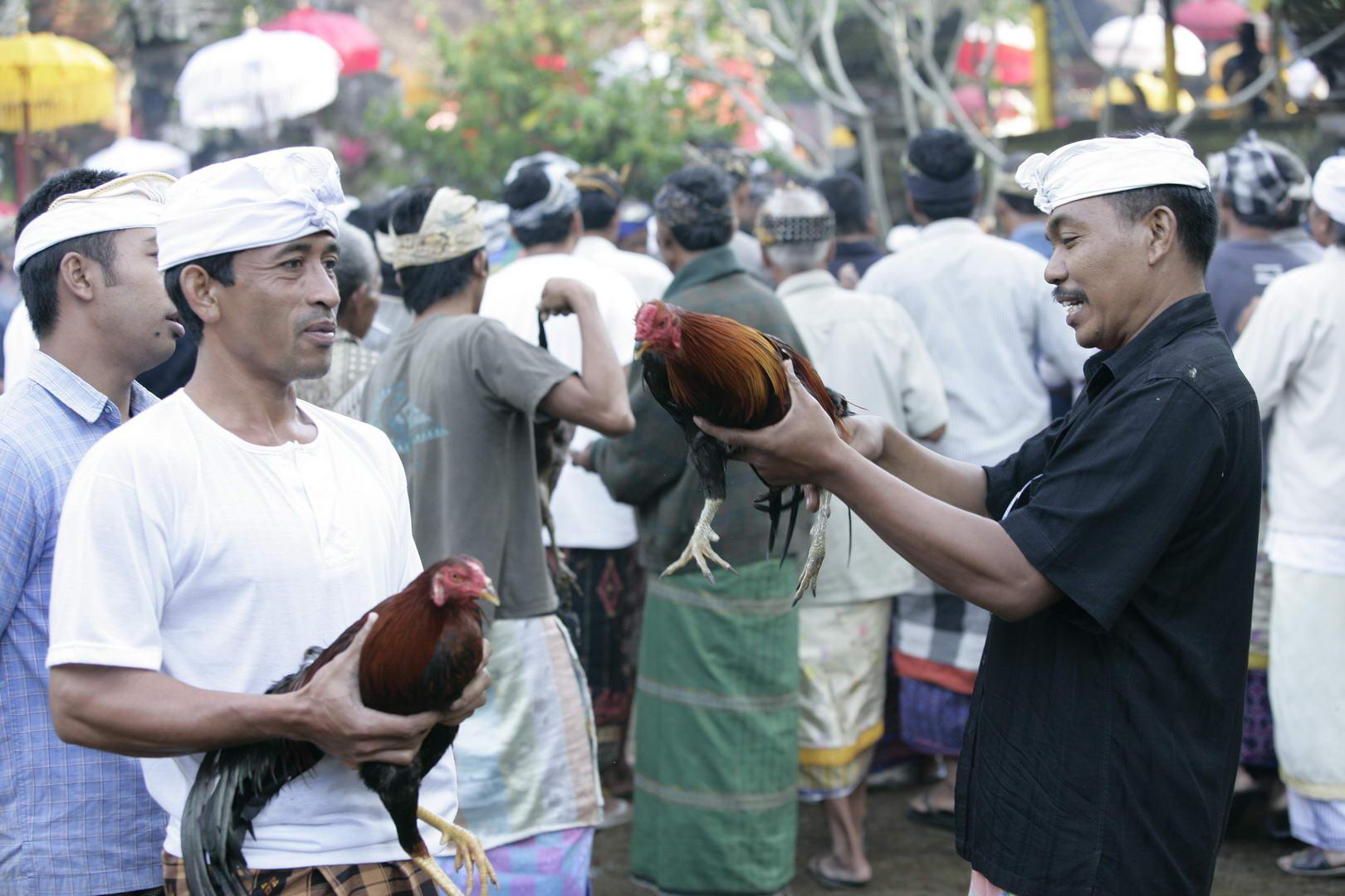 Eriks Bali 071