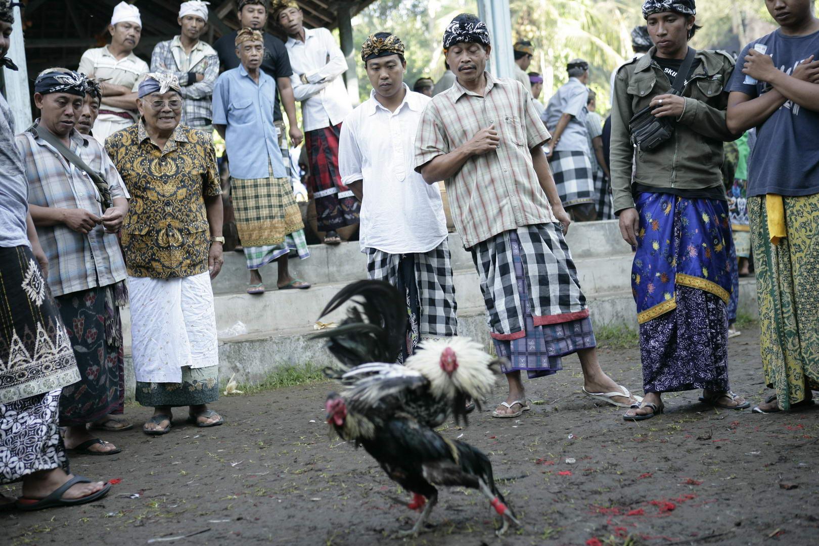 Eriks Bali 075
