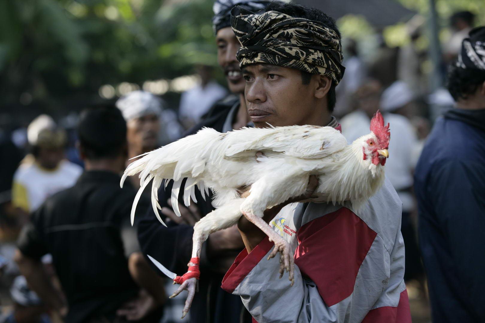 Eriks Bali 077