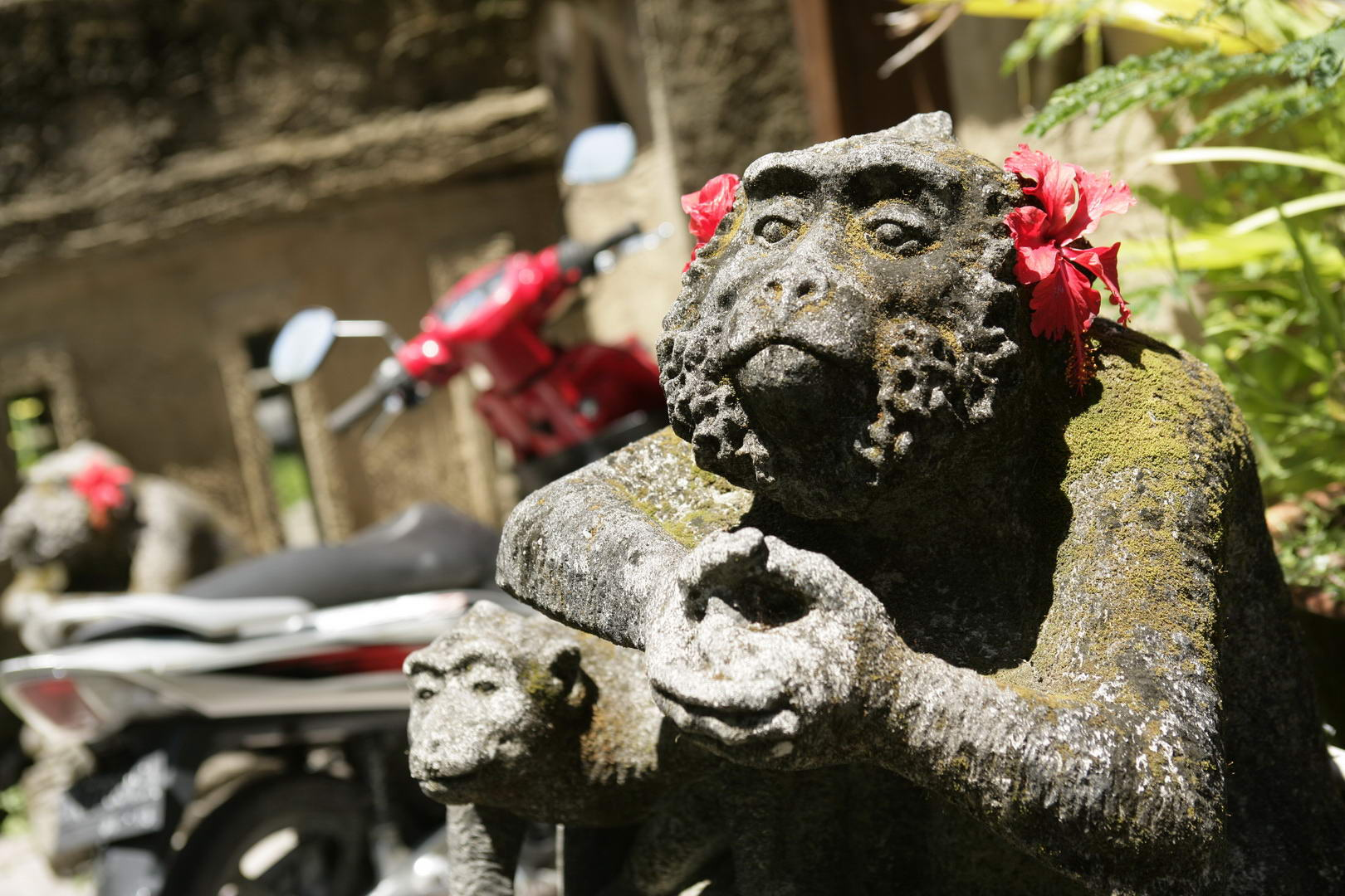 Eriks Bali 130