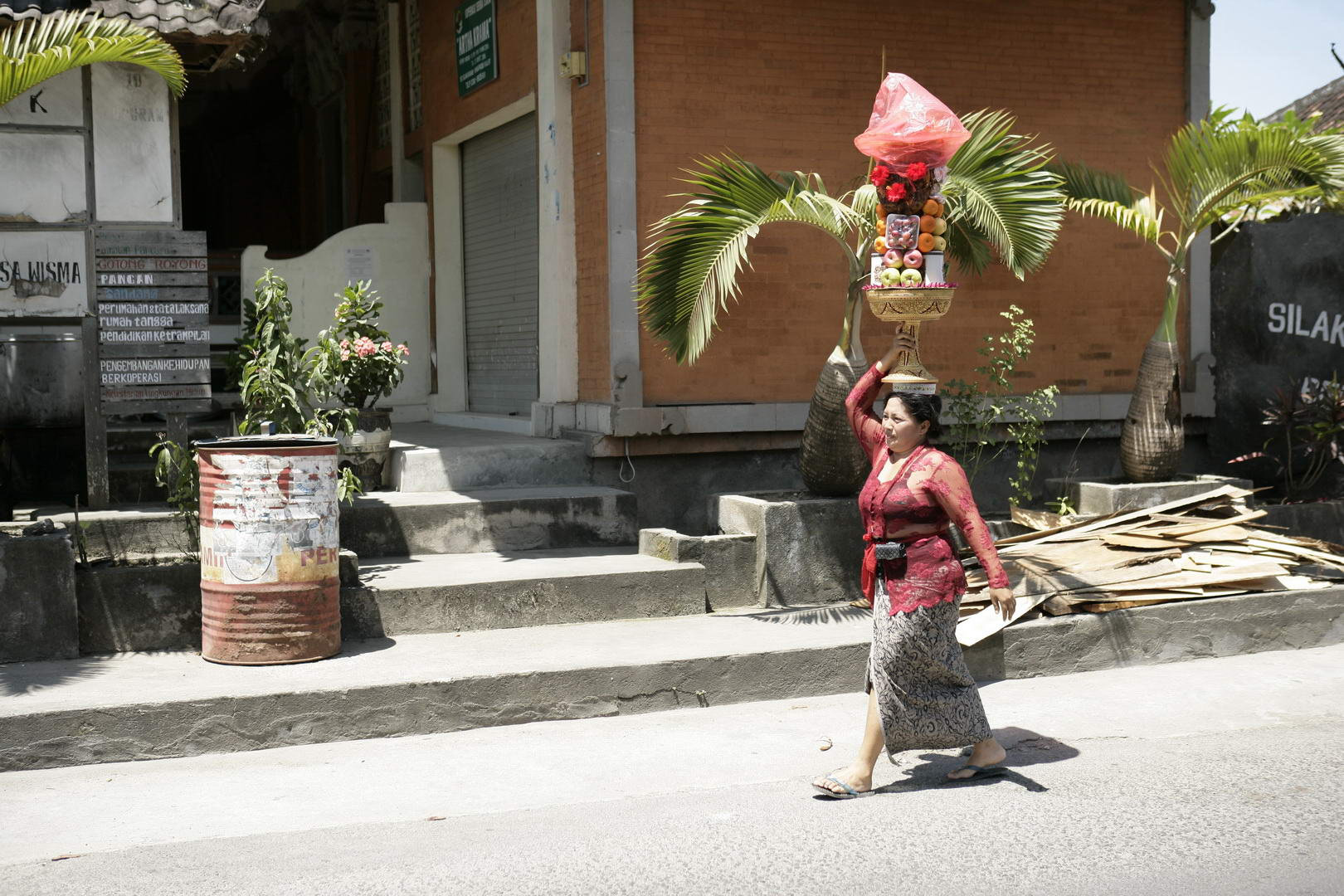 Eriks Bali 205