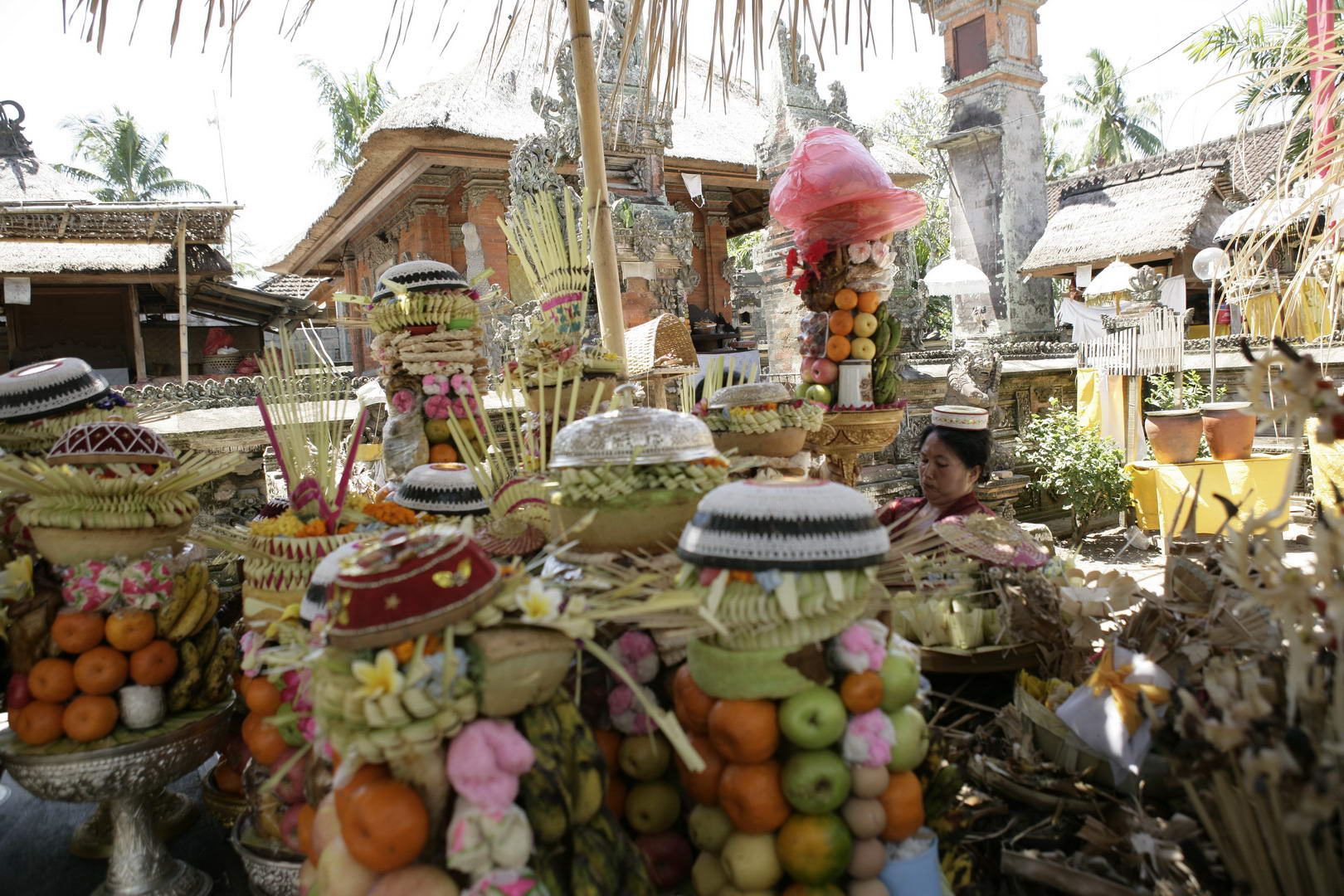 Eriks Bali 206