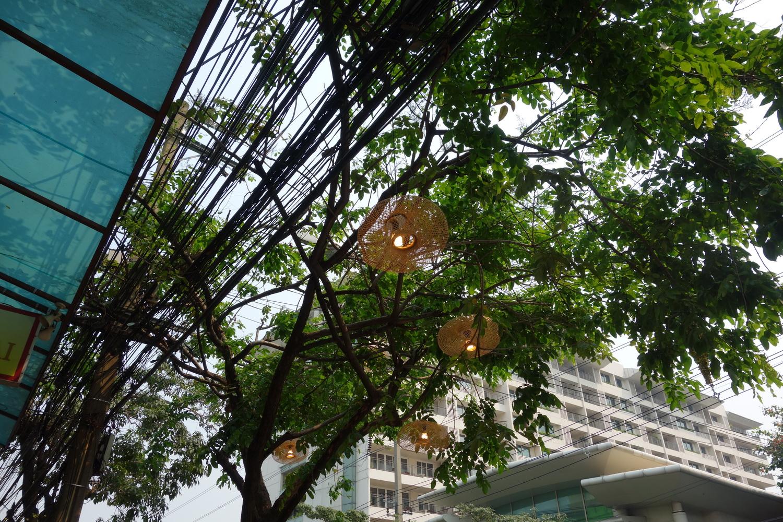 outdoor-treelight-002