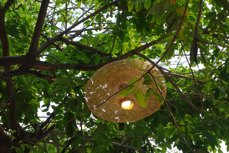 outdoor-treelight-004