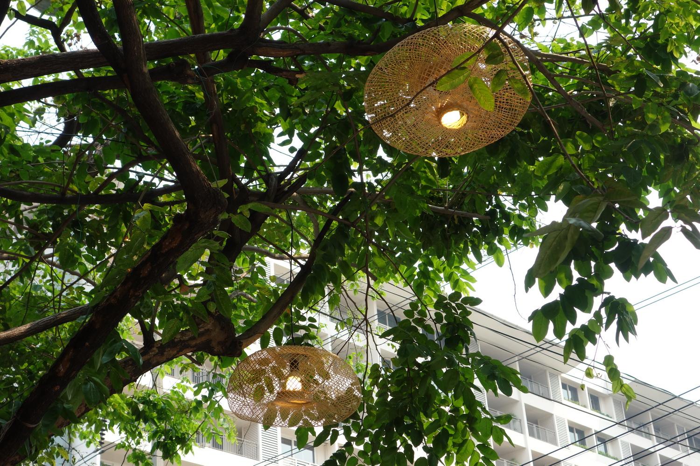 outdoor-treelight-005