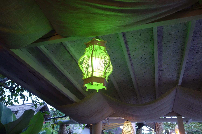 outdoor-treelight-018