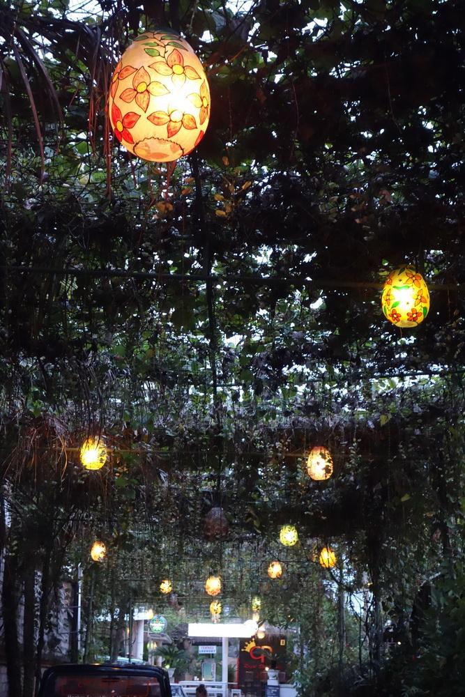 outdoor-treelight-019