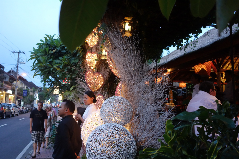 outdoor-treelight-020