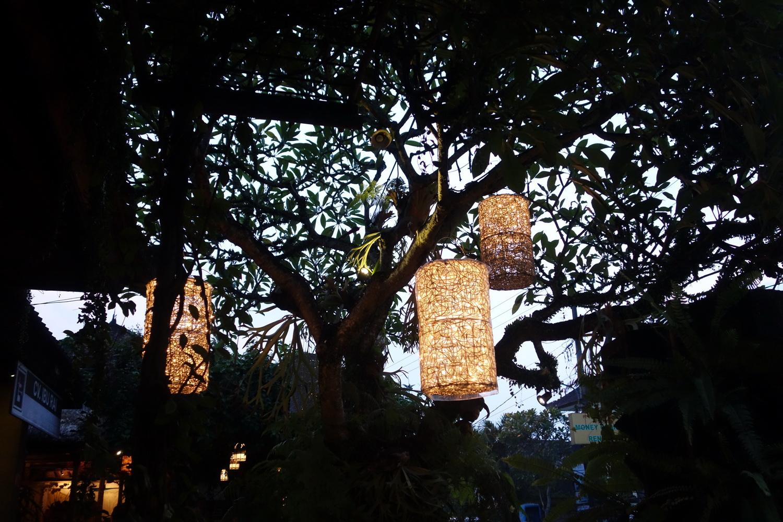 outdoor-treelight-022