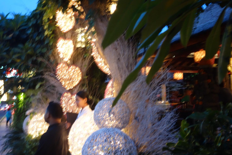 outdoor-treelight-026