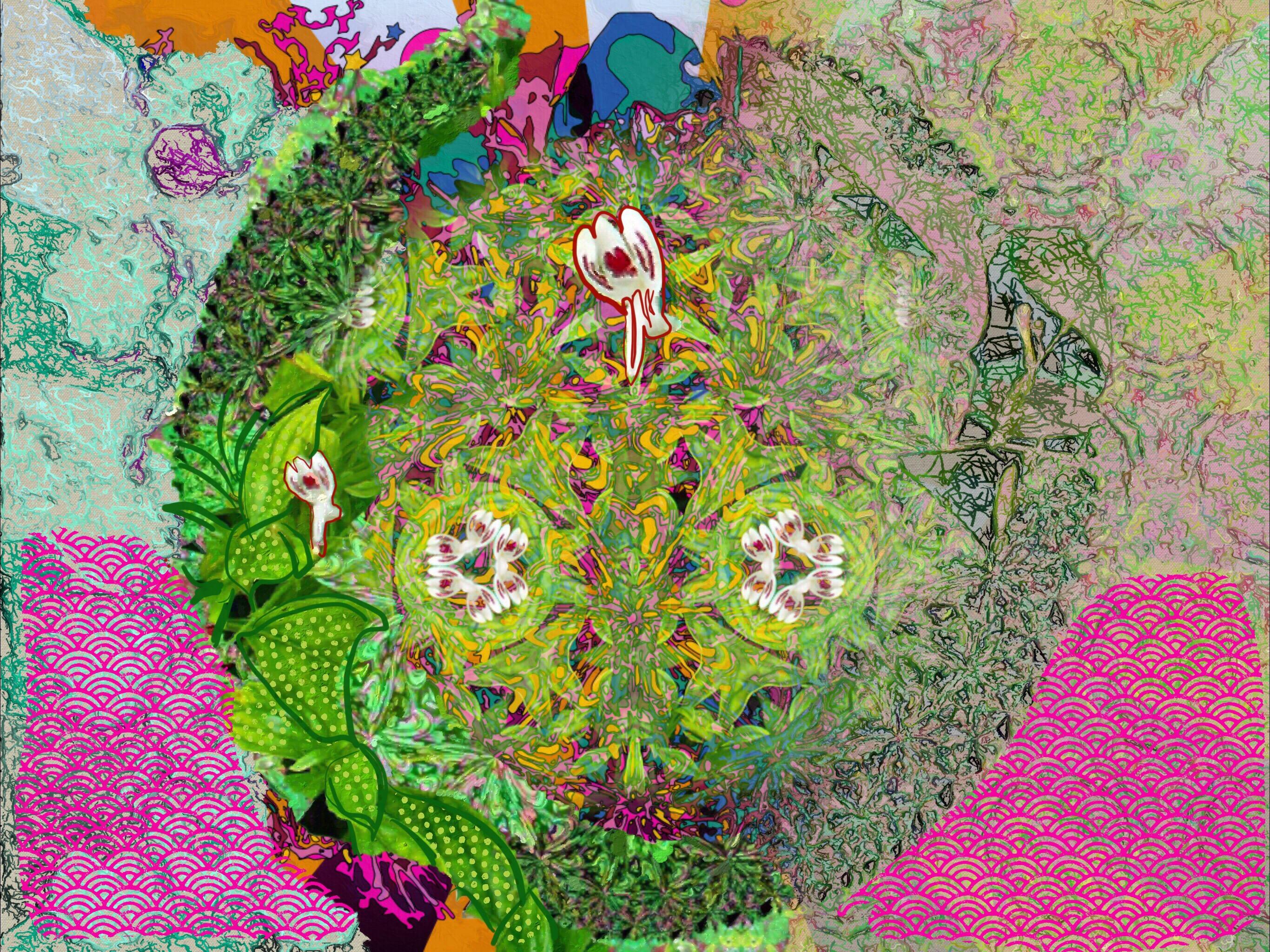 Sambiloto Mandala