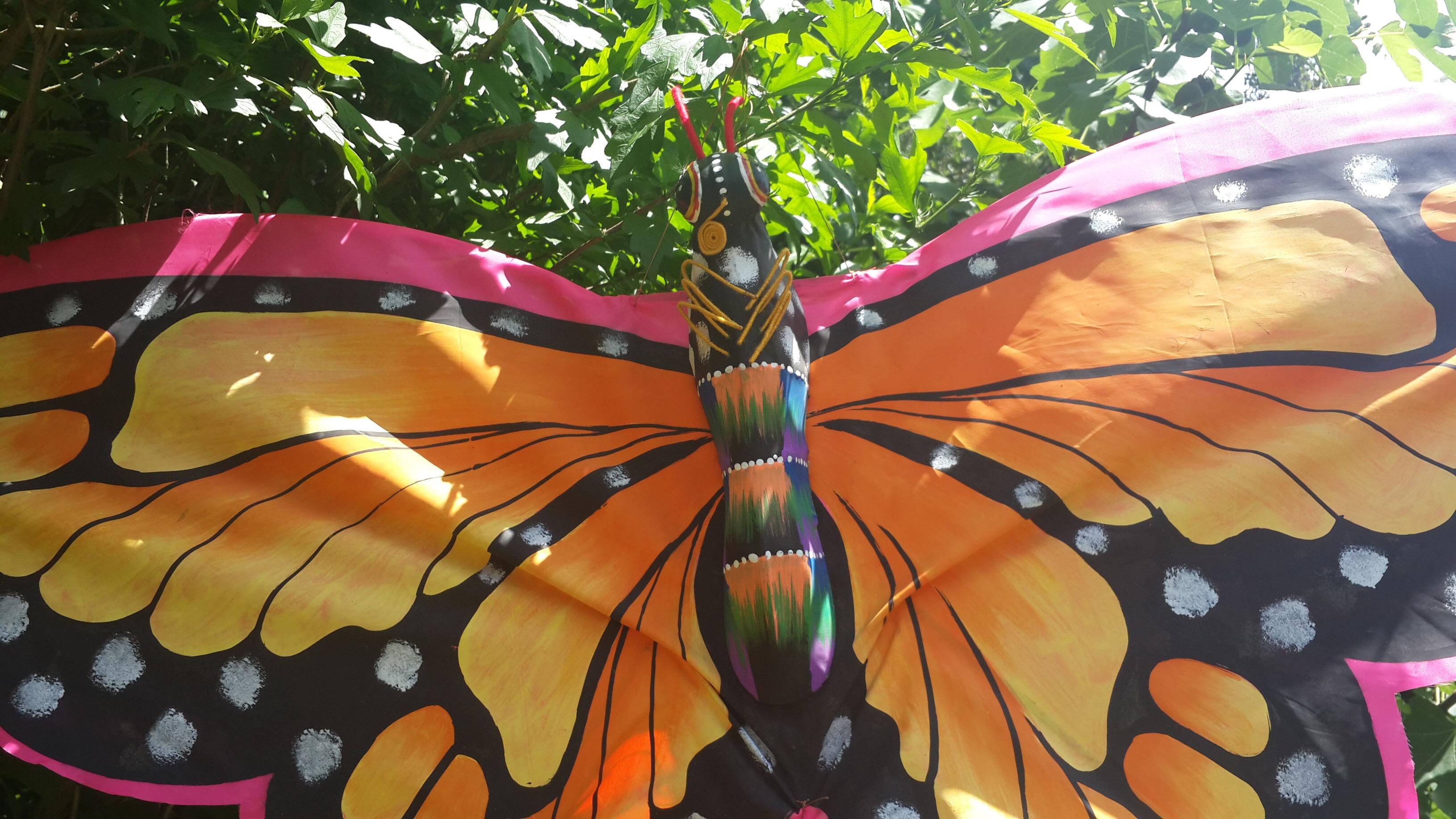 Butterfly Garden 8